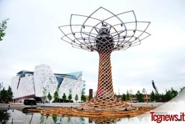 Expo Milano 2015 apre le porte al mondo