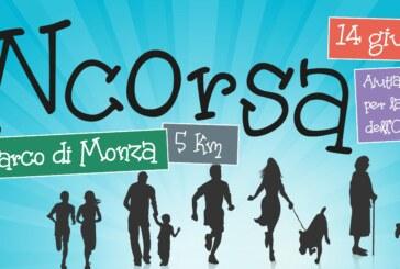 Monza: Domenica 14 giugno 2015 tutti INcorsa per la lotta alla SLA