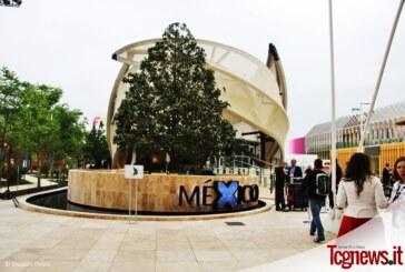 México en Expo Milán: un pabellón inspirado en el maíz, la historia y el futuro de una identidad cultural