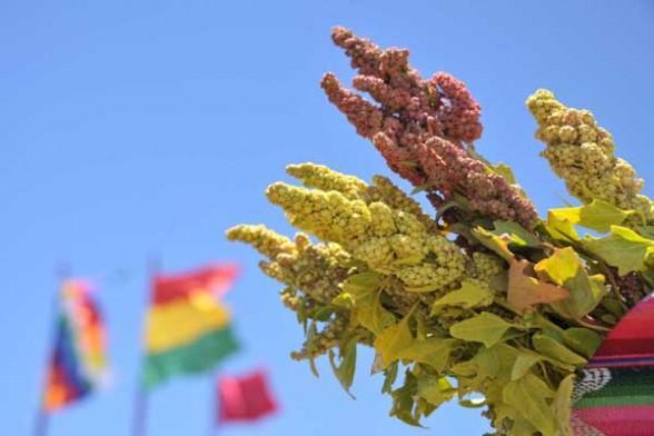 Bolivia y los Países Andinos presentan el Centro Internacional de la Quinua en la Expo Milán 2015