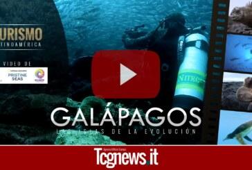 VIDEO | Galápagos, las islas de la evolución