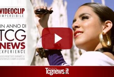 TCG EXPERIENCE: Un anno di TCG News