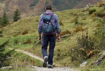 Escursioni guidate gratuite : Domenica 12 giugno torna l'appuntamento con A PIEDI NEL PARCO